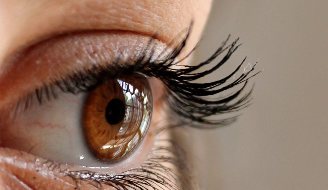 Reasons to Train in Eyelash Extensions, Part 1
